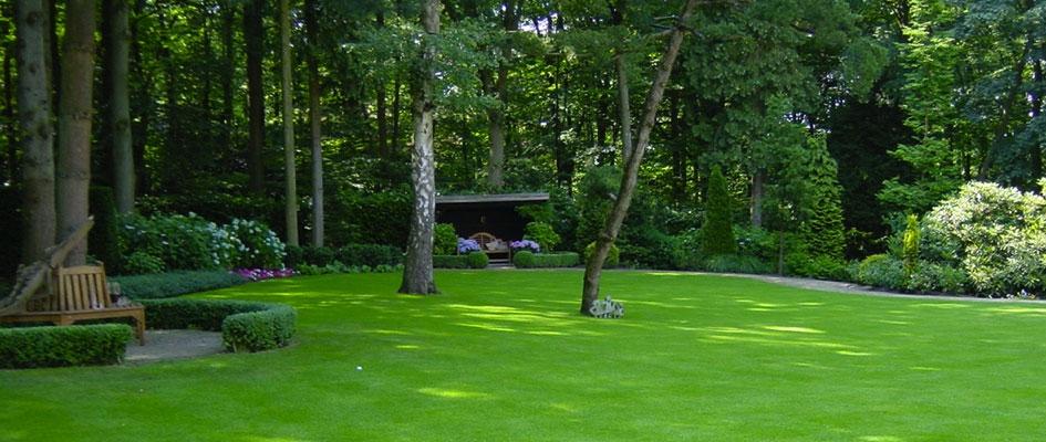 kale plekken gras repareren