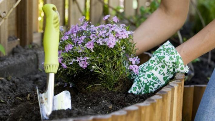 25 tips goedkoop tuin aanleggen of opknappen van je tuin for Tuin opknappen